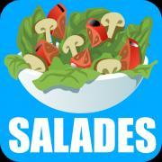 9 nouvelles recettes de salades du jour